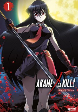 12kokuki-Wallpaper-569x500 Top 10 Action Anime for Girls