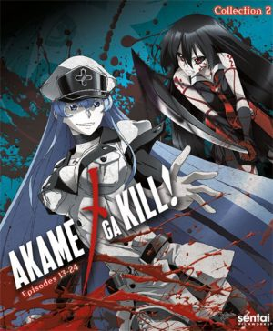 6 Anime Like Akame Ga Kill! [Updated Recommendations]