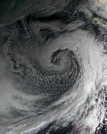 pic1-150x99 Can Tier Harribel of Bleach Stop Super Typhoon?