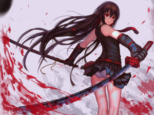 akame-ga-kill-dvd-300x425 Akame ga Kill Review & Characters - Fighting Against Corruption