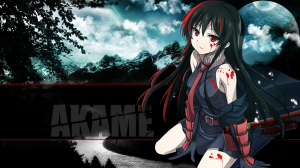 Akame ga Kill Review & Characters - Fighting Against Corruption