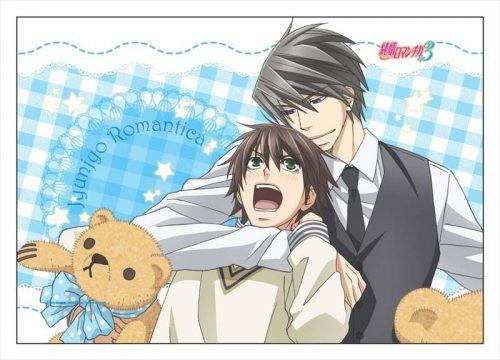 Junjou-Romantica-dvd-300x423 6 Anime Like Junjou Romantica (Pure Romance) [Updated Recommendations]