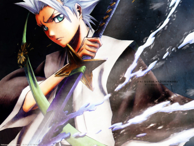 bleach-Toshiro-Hitsugaya-666x500 Top 10 White Haired Anime Boy / Guy