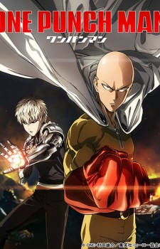 One Punch Man DVD