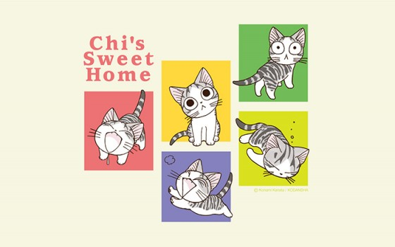 Chi's Sweet Home Atarashii Ouchi  wallpaper