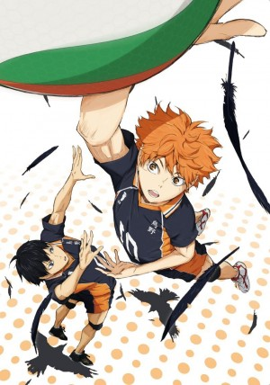 Haikyuu-dvd-300x428 6 Anime Like Haikyuu!! [Recommendations]