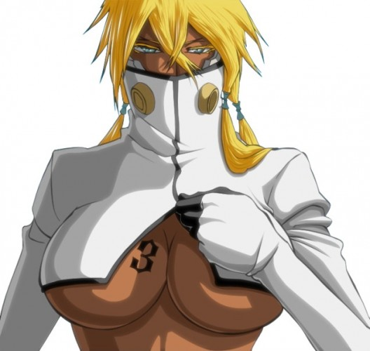 Tia-Harribel-Bleach-wallpaper-528x500 Top 10 Anime Cleavage