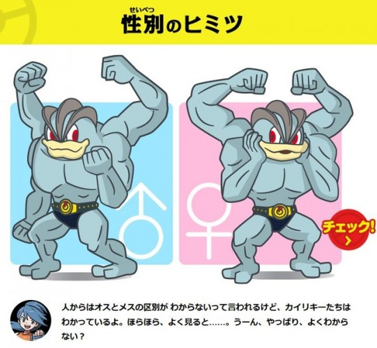 pokemon-machamp-official-art-500x500 The Secret Behind Machamp's Underwear that Not Even the Pokédex Knew