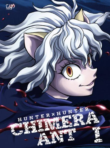 Top 10 Hunter x Hunter Strongest Characters List