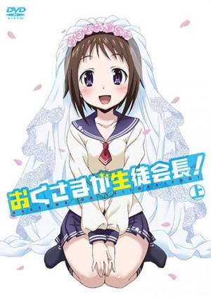 Okusama ga Seitokaichou dvd