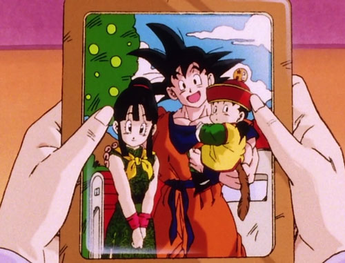 DragonBall Capture 5