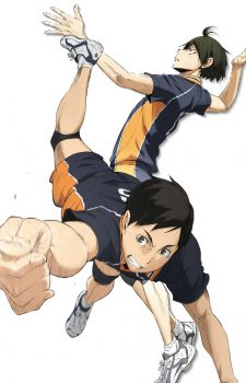 Haikyuu!! Second Season Vol. 6