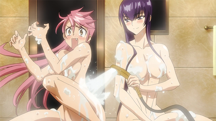 HIGH SCHOOL OF THE DEAD NAKED