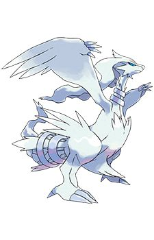 Reshiram pokemon