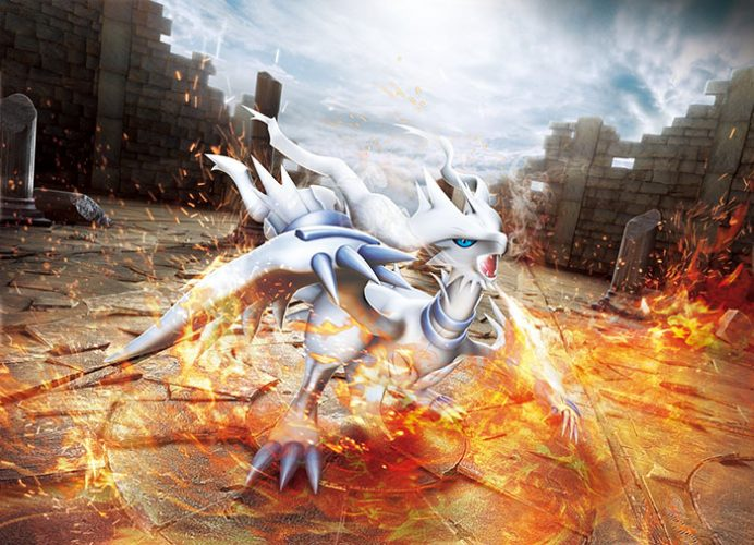 Reshiram pokemon wallpaper