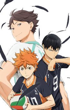 Haikyu Second Season dvd