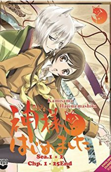 Gintarou-Gingitsune-Messenger-Fox-of-the-Gods-wallpaper-603x500 Top 10 Kitsune Boys in Anime