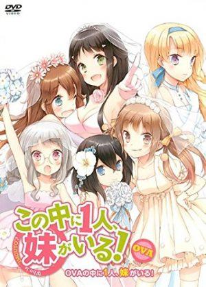 6 Anime Like Kono Naka ni Hitori, Imouto ga Iru! [Recommendations]