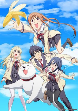 6 Animes parecidos a Aho Girl