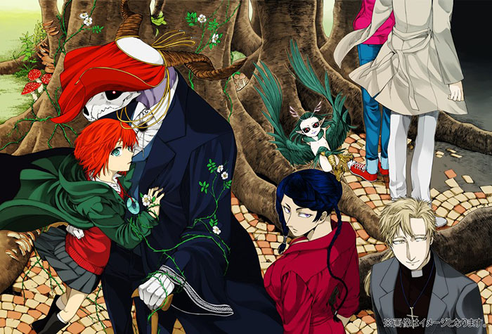 Top 10 Magical The Ancient Magus Bride Characters
