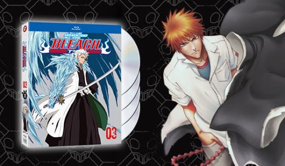 hunterxhunter-capture-blu-ray-2-560x327 New VIZ Releases: Hunter X Hunter Vol. 3 & Bleach Set 3