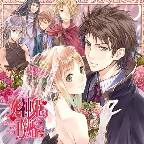 Shinigamihime-no-Saikon-Wallpaper Top 10 Josei Light Novels [Best Recommendations]