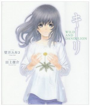 Another-novel-Wallpaper-300x421 6 Light Novels Like Another [Recommendations]