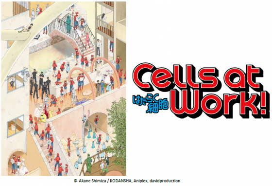 Cells-at-Work-capture-560x382 Aniplex of America Brings Cells at Work! to Anime Expo and Crunchyroll This Summer