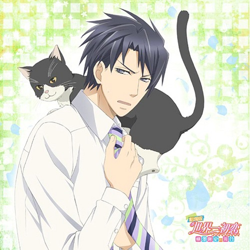 Sekaiichi-Hatsukoi-dvd-300x432 [Fujoshi Friday] 6 Anime Movies Like Sekaiichi Hatsukoi: Valentine-hen [Recommendations]