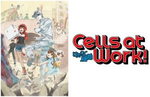 Cells at Work! Comes to Blu-ray with Brand New English Dub this Summer