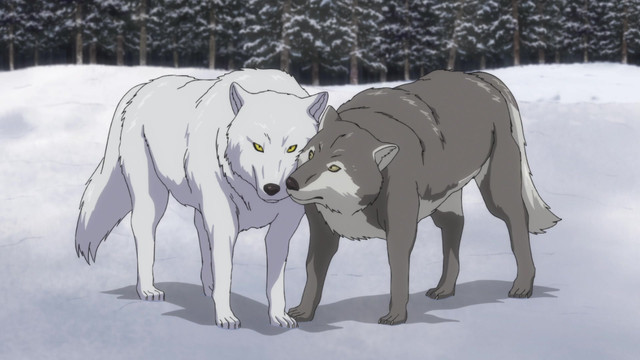Golden-Kamuy-crunchyroll-Wallpaper Ookami - Wolves in Japanese Culture & Anime