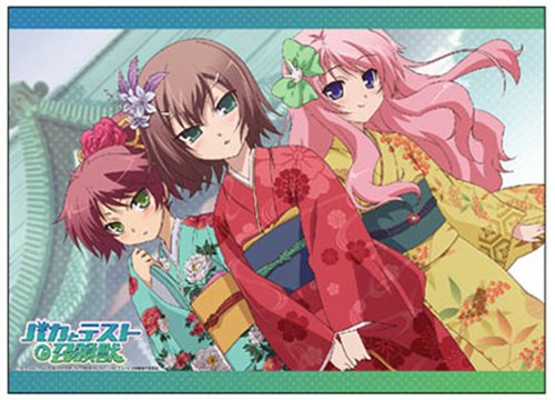 Baka-to-Test-to-Shoukanjuu-Wallpaper-700x394 How to Sell Your Show in Five Minutes - The Efficiency of Baka to Test to Shoukanjuu (Baka & Test - Summon the Beasts)