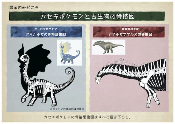 Pokemon-Fossils-Top-340x500 Like Pokemon? Like Dinosaurs? You'll LOVE this Upcoming Pokemon Fossils Museum Exhibit!